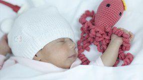 Una nueva metodología especial: abrazos de pulpitos para bebés prematuros