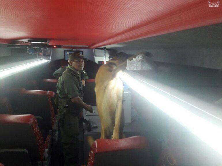 Pampa Blanca: secuestran más de 11 kilos de cocaína en un colectivo de larga distancia