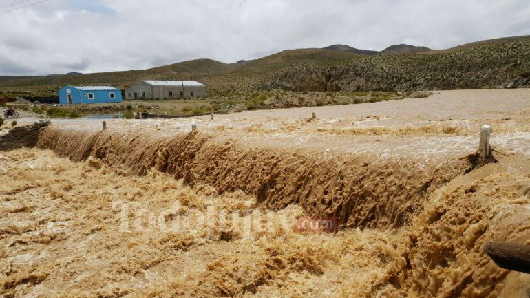 Rinconada y Orosmayo: liberaron la ruta 7 tras la crecida del río y evacuaron 2 casas de adobe