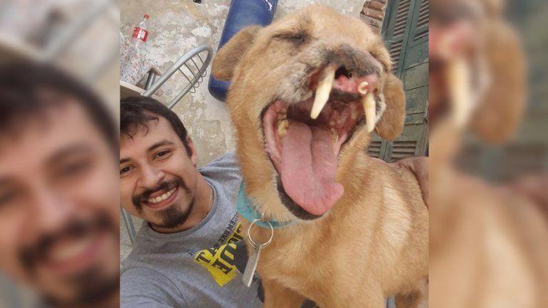 Le dedicó una carta a su perro: Estábamos destinados a encontrarnos, por eso no murió