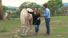 Equitación con fines terapéuticos: una alternativa con resultados