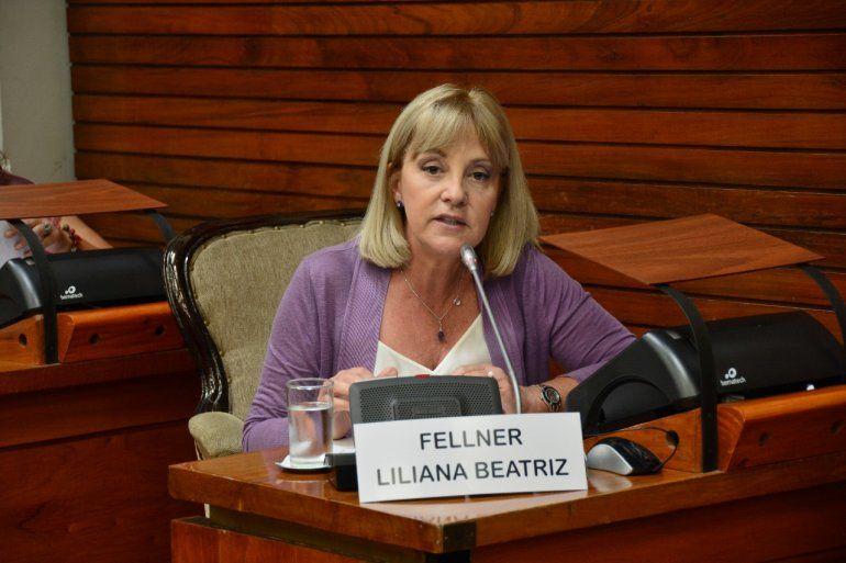 Liliana Fellner: Hay que aplicar la normativa contra la publicidad engañosa