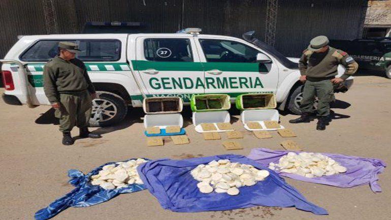Narco heladeras: secuestran 12 kilos de pasta base ocultos en conservadoras