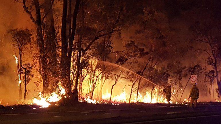 Hicieron asado en el campo, provocaron un incendio y ahora deben pagar una multa millonaria