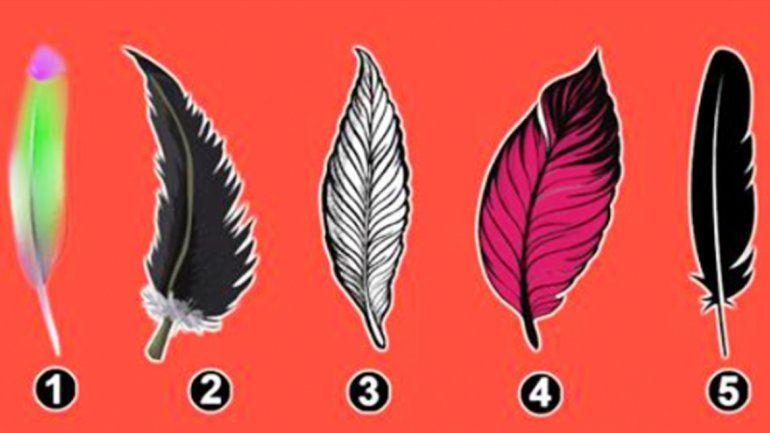 Selecciona una pluma y te dirá un secreto de tu personalidad