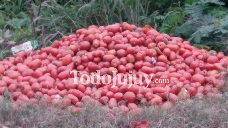 Cuarentena: El tomate no puede esperar los siete días