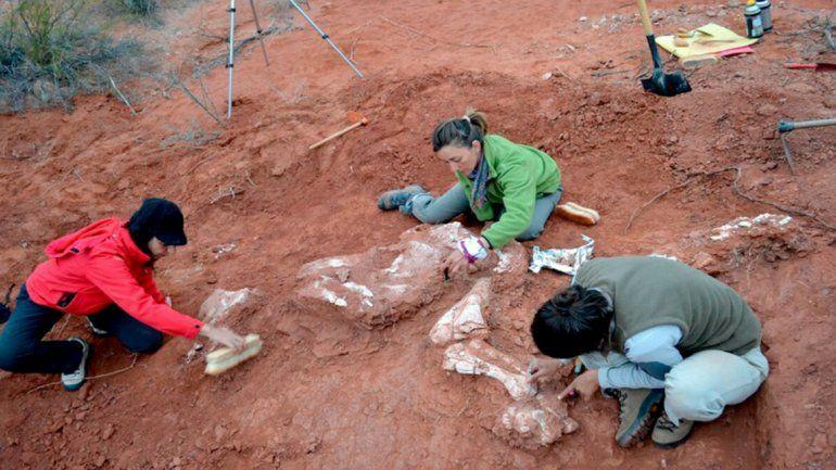 Tiene 205 millones de años: descubrieron en San Juan al dinosaurio gigante más antiguo de que se tenga registro
