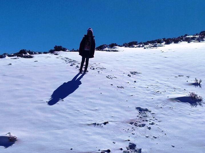 Nieve en Jujuy: así amaneció la localidad de Catua en la puna jujeña
