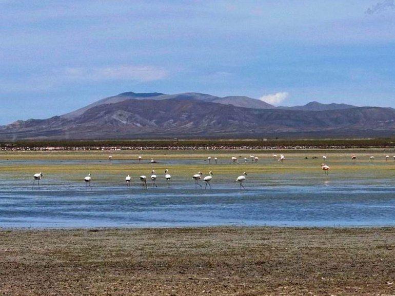 Las Maravillas Argentinas: siete paisajes jujeños son semifinalistas