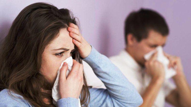 Alerta por Gripe A en Argentina: en Jujuy no hay casos