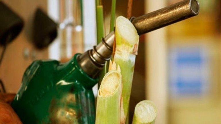 Inquietud del sector sucroalcoholero por el cupo de biocombustible