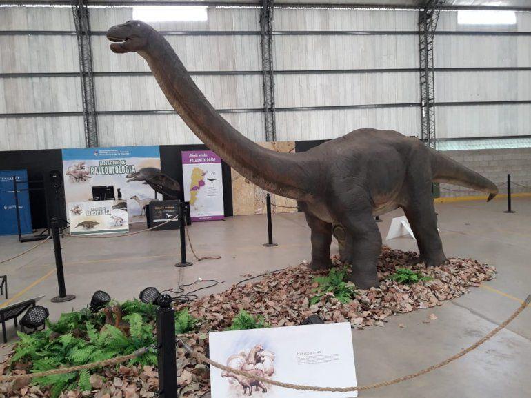 Con unos dinosaurios espectaculares, hoy inaugura la muestra Ciencia Viva