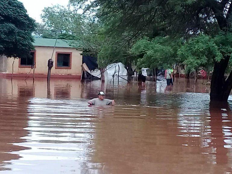 Según Greenpeace, las inundaciones en Salta fueron donde más bosques se destruyeron