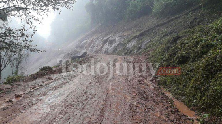 Quedaron habilitadas las rutas en Vinalito y Calilegua