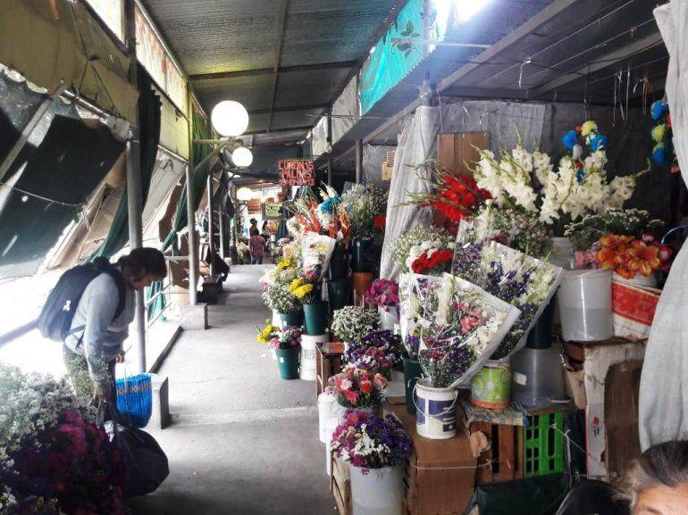 Paseo de las flores: Estamos olvidados y nadie hace nada por nosotros