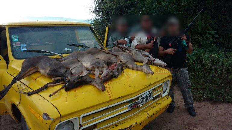 San Pedro: detienen a tres cazadores furtivos con armas, pieles y animales mutilados