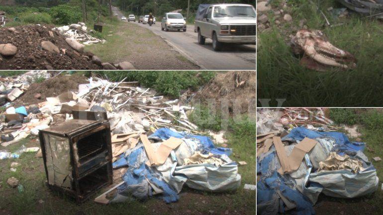 Basural en la Ruta 2: restos de animales, materiales de construcción y mucho más al alcance de todos