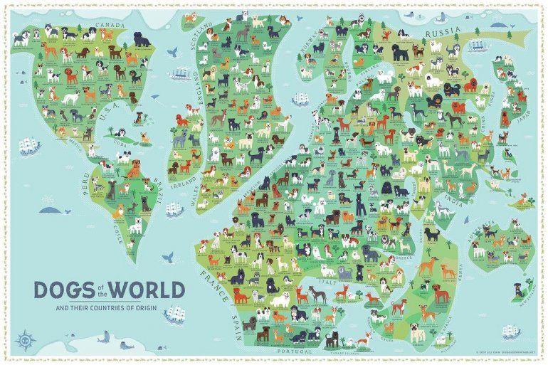 El mapa de Los perros del mundo que se volvió viral en redes sociales