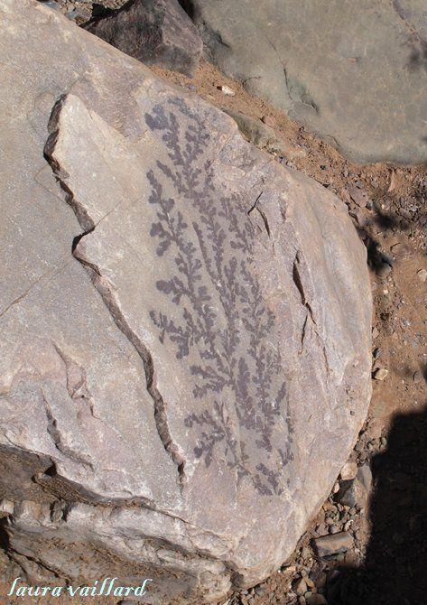 Cuevas del Wayra: un museo al aire libre escondido en el corazón de Tilcara que espera a los aventureros