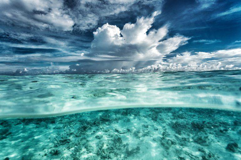Los océanos cambiarán su color para siempre y habrá consecuencias catastróficas
