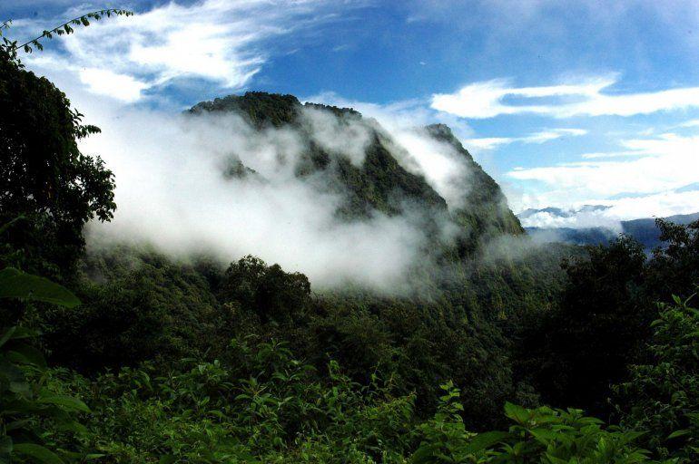Parque Nacional Calilegua, un lugar de naturaleza pura en el corazón de Jujuy