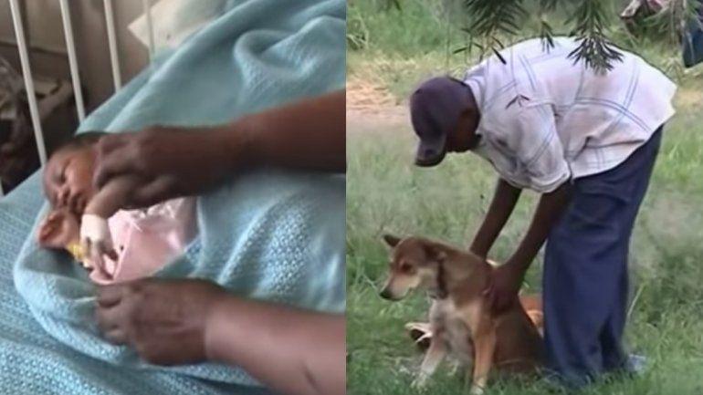 Una perra salvó a una bebé recién nacida que fue lanzada a la basura