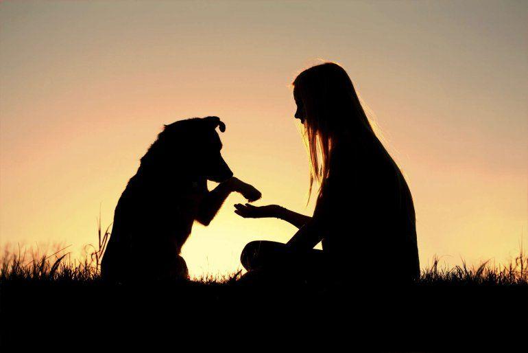 Según la psicología, la muerte de una mascota duele tanto como despedir a un familiar