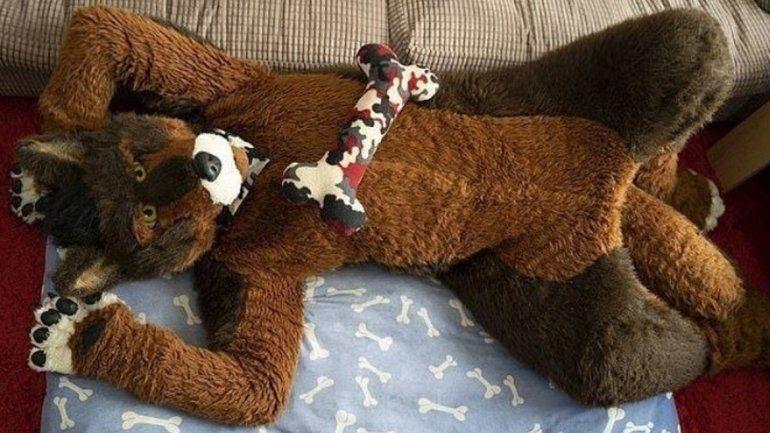 Un hombre se cree perro, ladra a sus amigos, come croquetas y se viste como tal