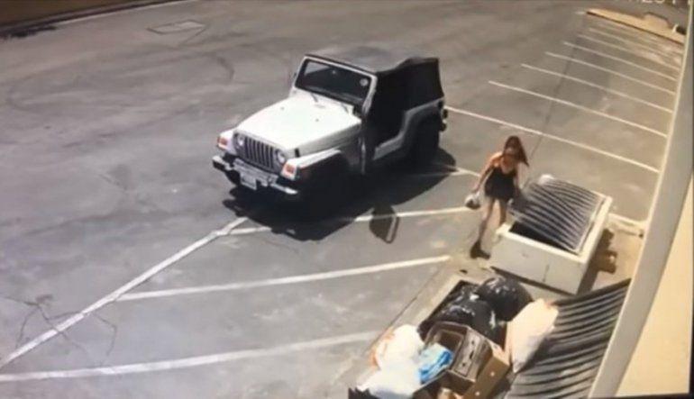 Una mujer tiró 7 cachorros a la basura y huyó en su auto