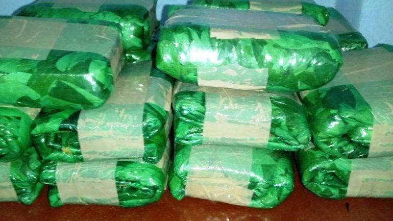 Secuestran más de 30 kilos de hojas de coca en la ruta provincial 11