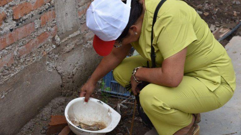 El dengue avanza sin tregua, confirmaron 1.902 casos