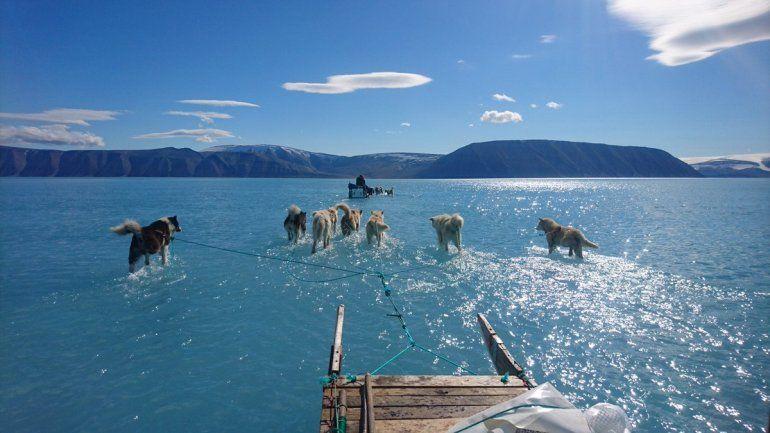 Preocupación en Groenlandia: perdió 2 mil millones de toneladas de hielo en un día