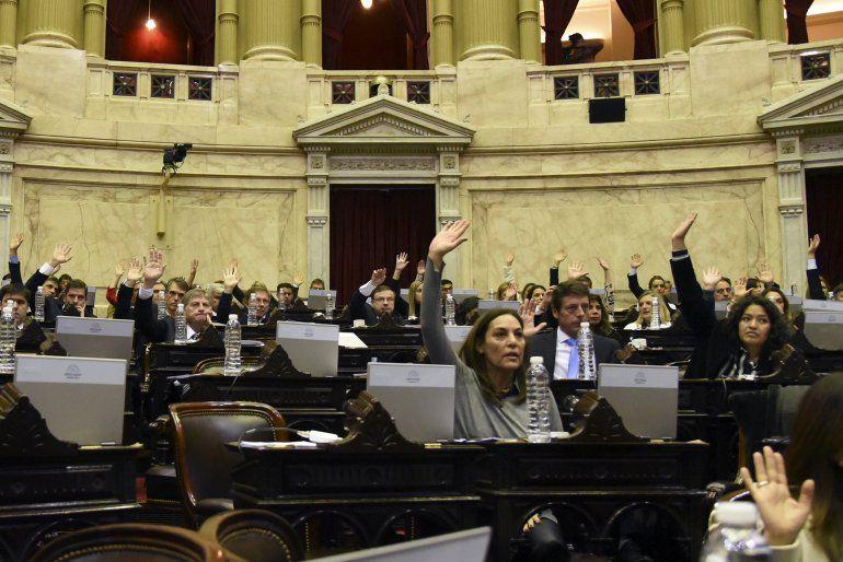 Casi 50 diputados celestes se oponen a la designación de la Defensora de la Niñez