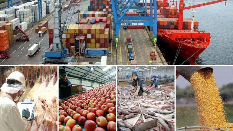 Por el acuerdo con la Unión Europea, la soja, carne, pescados y frutas se exportarán sin arancel