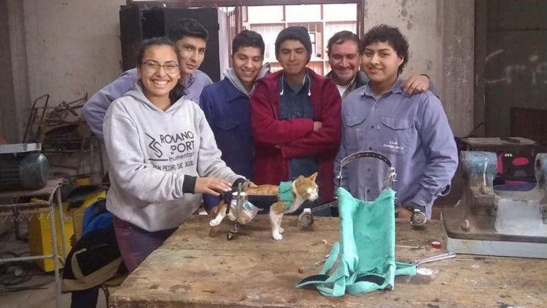 Alumnos de la técnica de San Pedro hicieron carritos para un gato y una perrita que no podían movilizarse