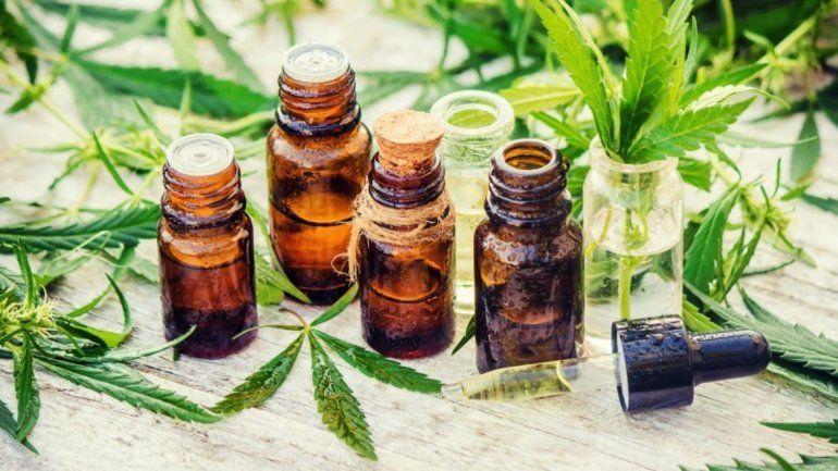 Replican el modelo de producción de Cannabis medicinal en otras provincias