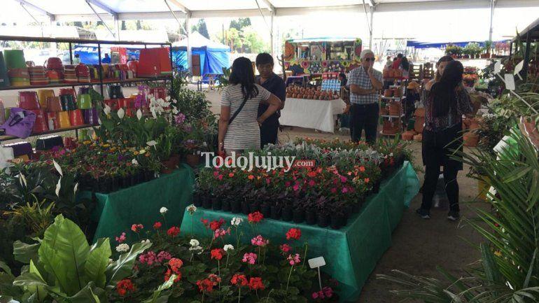 Para los amantes de las flores: comenzó la 2º edición de Jujuy en Flor