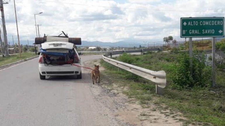 Repudian en redes sociales la manera en la que llevaban un perro por la ruta