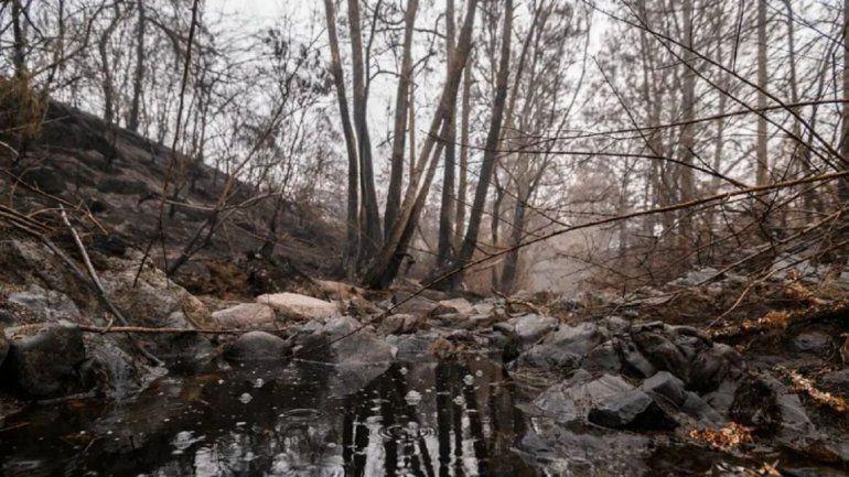 Después del incendio llegó la tormenta del siglo a Australia