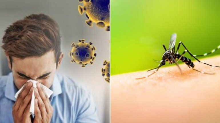 Sería mortal coronavirus y dengue juntos en San Pedro