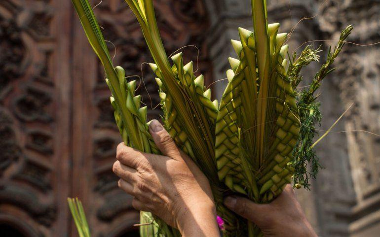 Domingo de Ramos: El Cuatro te lleva la misa en vivo a los hogares jujeños