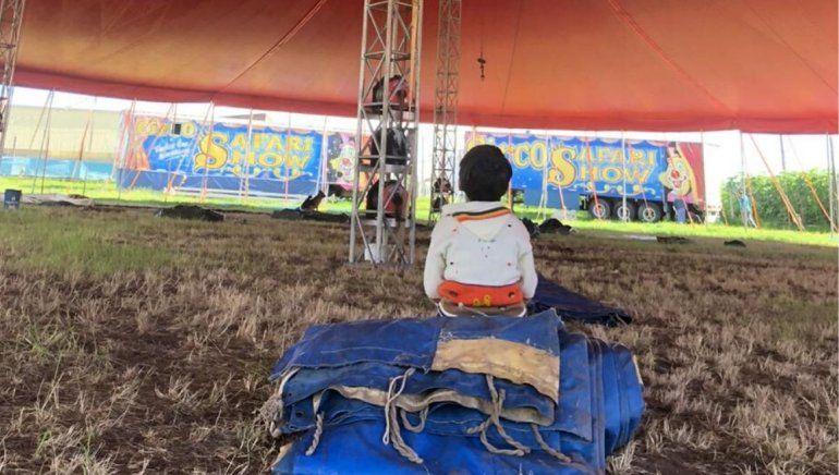 Pandemia mundial: la increíble historia de un circo varado en Jujuy