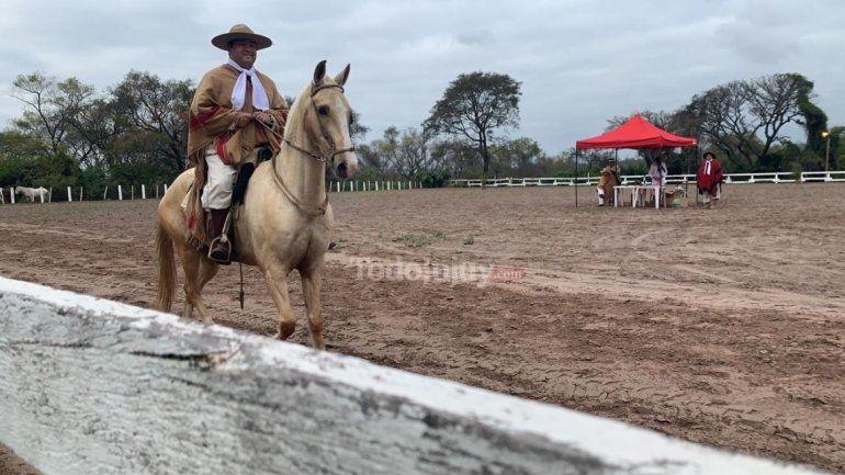 Llegaron a Jujuy 140 caballos peruanos y se lucen en un concurso en la Rural