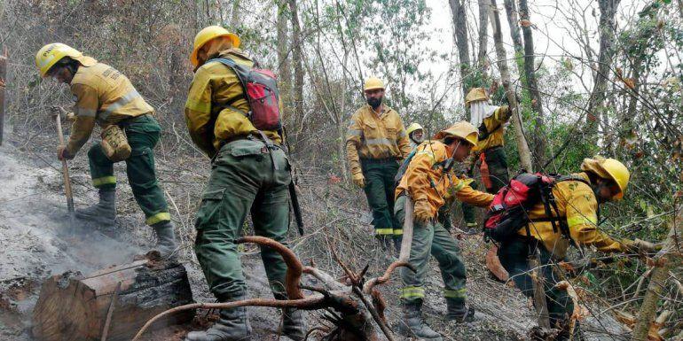 Controlan dos grandes incendios en el Parque Nacional Calilegua